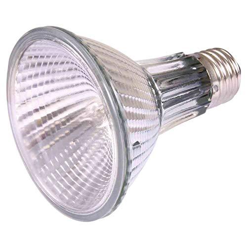 Trixie 76014 HeatSpot Pro, Halogen Wärme-Spotlampe, ø 81 × 108 mm, 75 W