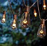 SkrLights Outdoor Patio String Lights,10Ft Edison Bulb String Lights for Patio Garden Porch Backyard Party Deck Yard(Plus 1 Extra Bulbs)-Brown