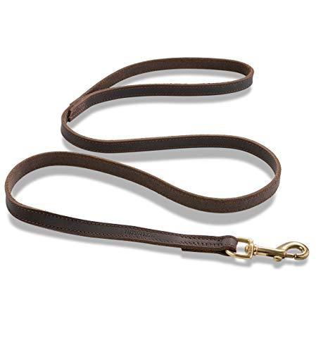Premium Leder Hundeleine Shorty 1m - Vollleder Hundeleine - Führleine mit Bolzen-Karabiner - Shorty (Dunkelbraun)