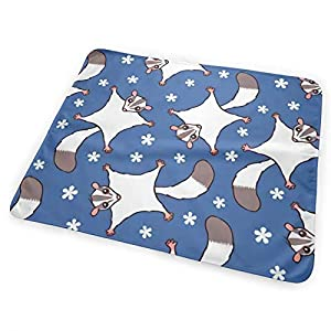 Unisex Baby Changing padcovewith Waterproof Cover 25.5inX31.5in Portable, Diaper Baby Changing Mat Wipeable Foldable Waterproof for Home Travel Nursery —Sweet Sugar Glider Flowers