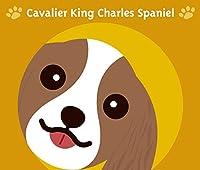 見つめる キャバリア キングチャールズ スパニエル ブレンハイム 犬 ステッカー オレンジバック MK-2