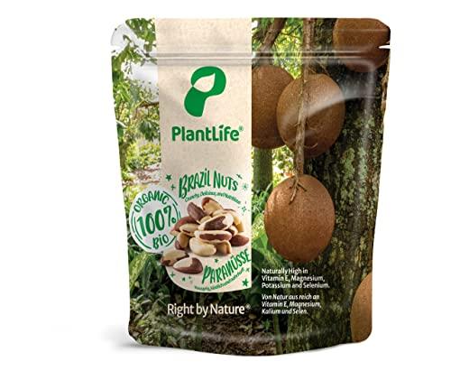 Noci del Brasile BIO 1 kg Brasiliane sgusciate non trattate crudi raw 1000 gr Brazil nuts