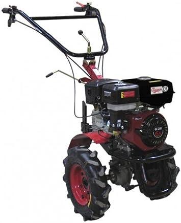 Amazon.es: motoazadas a gasolina - 2.000 W y más