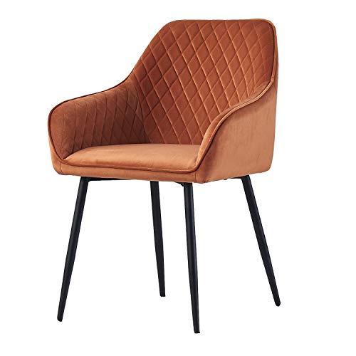 AINPECCA Dining chair Orange Velvet Armchair with Armrest & Backrest Upholstered seat with Black Metal legs (Orange Velvet, 1)