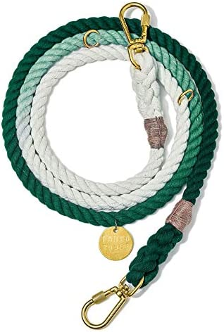Found My Animal Teal Ombre Cotton Rope Dog Leash Adjustable Small product image
