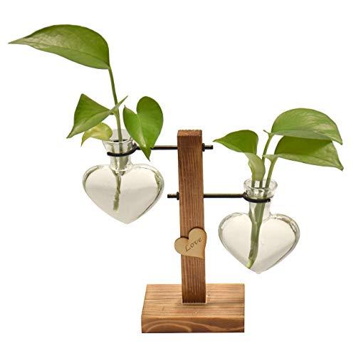 Magiin Florero de Vidrio Macetero con Soporte de Madera Jarrón de Vidrio Transparente para Jardinería Planta de Hidroponía Decoración de Escritorio Casa Boda (Corazón, 2 Floreros)