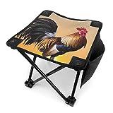 アウトドア 椅子 サニービッグコック アウトドア 椅子 ピクニック 釣り コンパクト イス 持ち運び キャンプ用軽量 収納バッグ付き 折りたたみチェア レジャー 背もたれなし
