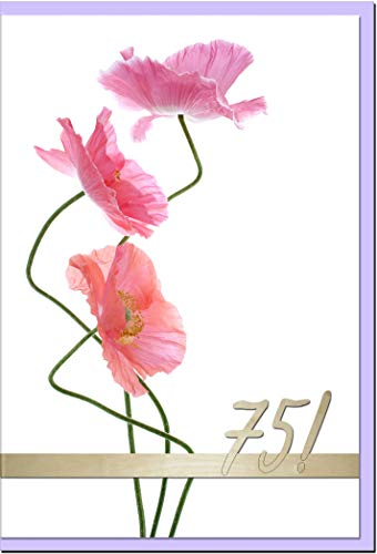 metALUm Geburtstagskarte ZAHLENKARTE 75. GEBURTSTAG   1218008S