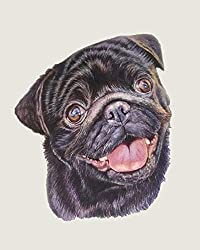custom pet portrait from your photo painted in watercolor