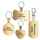 BKDZ Identification gravée de qualité supérieure personnalisée en Acier Inoxydable pour Chien, Chat, étiquettes, os, Rond, Coeur, carré, étiquette, Collier (S, Coeur d'or)
