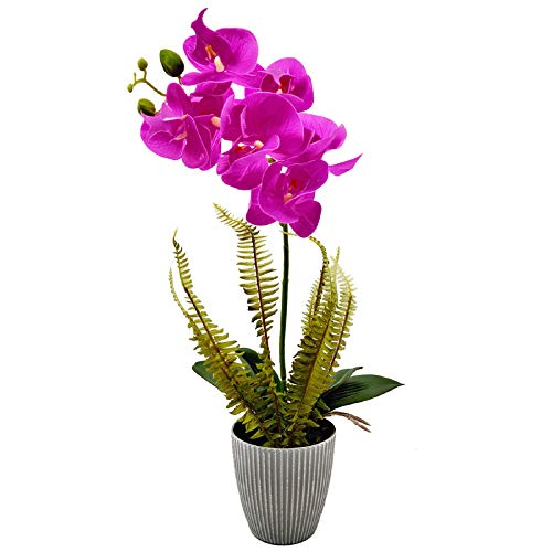 Aisamco Flores de orquídeas Artificiales con Maceta Gris Flores de Phalaenopsis de plástico Falso Bonsai con Maceta para decoración de Centro de Mesa de Fiesta de Oficina de Boda en casa