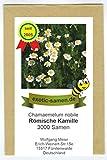 Römische Kamille - Bienenweide - Chamaemelum nobile - 3000 Samen