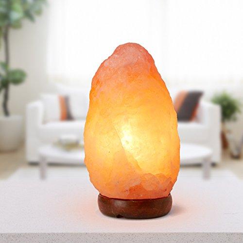 Lampada di Sale Rosa del Himalaya 3 - 4 kg con cavo CE due poli con interruttore e lampadina 15w a incandescenza luce gialla inclusa