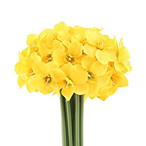 Mossyard 2 Bunches 12 Heads Artificial Daffodils, 15.8 Inches Long Stem Blossom Silk Sun Flowers for Home Wedding Office Party Garden Decor, Floral Arrangements, Table Centerpieces, Yellow