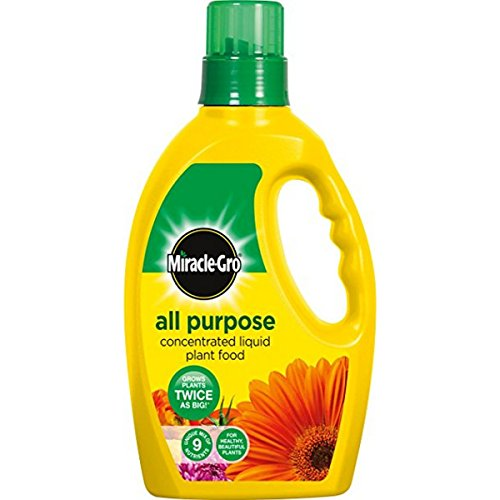 2 X Miracle-Gro All Purpose Concentrated Liquid Plant Food Bottle, 1 L