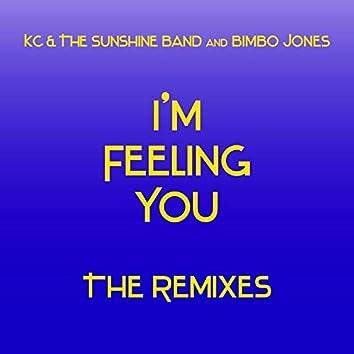 I'm Feeling You - The Remixes