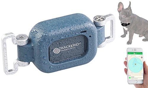 TrackerID GPS Tracker ohne ABO: GPS- & GSM-Live-Tracker für Hunde und Haustiere, mit Halterung, IP67 (GPS Tracker Hund ohne ABO)