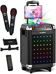 in budget affordable Portable speaker system with karaoke for adults and children, Bluetooth hands-free function + 2 wireless …