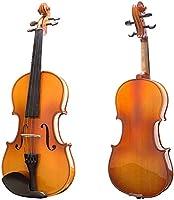 バイオリンセット キャンバス箱とブラジルの弓とバイオリン光沢のある色