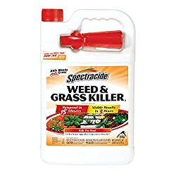 Spectracide Weed & Grass Killer