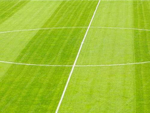 Shopmeeko Graines: 200pcs pelouse plantes de gazon plantes herbe fraîche vert tendre Coureur gazons pour la maison Soccer Park Golf Place Hardy herbe bonsaïs