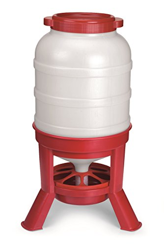 LITTLE GIANT Plastic Dome Feeder (60 Lb) Heavy Duty Plastic Gravity Fed Poultry Feed Container Tank (Red) (Item No. DOMEFDR60)
