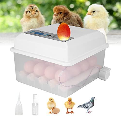 TOPQSC Eier Inkubator Brutmaschine 16 Intelligente Inkubatoren LED-Anzeige Mini Automatischer Flip-Inkubator Temperaturregelung Inkubator,verwendet für Hühner-,Enten-,Gänse- und Wachteleier