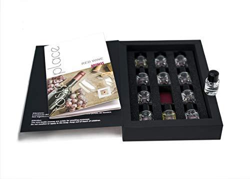 TASTERPLACE Set de aromas de vino tinto - versión en inglés - para sommeliers - para amantes del vino - herramienta de degustación