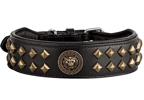 Michur Diego läderhundhalsband lejon huvud knoppar mässing look guld svart