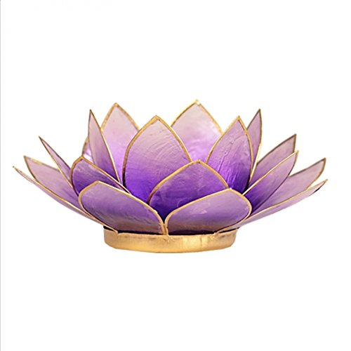 Portacandela porta candela fiore di loto Capiz viola chiaro 13.5cm