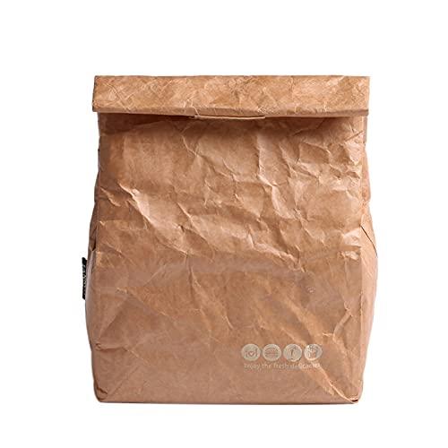LNSGA Bolsas de Almuerzo Paquete de Hielo Kraft Papel Bolsa térmica para Mujeres para niños Comida Picnic Multifunción Caja de refrigerador Aislamiento Contenedor de Almacenamiento 6L