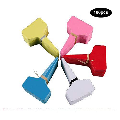Wankd plantenbordjes, 100 stuks, mini T-vorm, plastic plantensteker, steeketiketten beschrijven, plantenbordjes, borden 6 cm x 10 cm, handig voor alle tuinders 6*10cm Blauw, geel, wit, roze, rood.