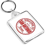 Destination Vinyl Keyrings Llaveros de Vinilo de Destino 1 x Welcome to San Antonio Texas Travel – Llavero – IP02 – Regalo para mamá papá niños # 5886