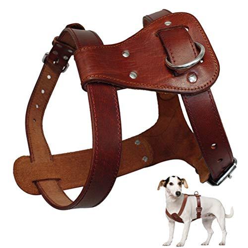 Feidaeu Haustier Ledergeschirr Braun Mittelgroße Hunde Gehtraining Einstellbare Haltbare Weste Brustgurt