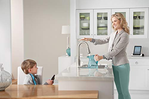 best kitchen faucet for well water