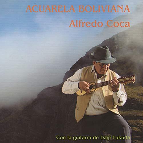 Selección de Huayños: El Hechizo, Vallunita, Nan Patapi, Amapola, La Flor en El Camino (2016 Remastered)