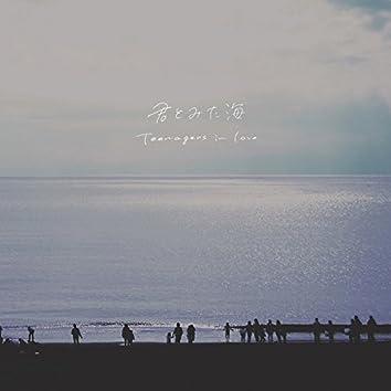 君とみた海