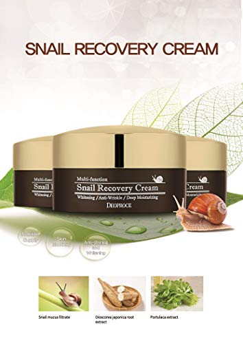 Deoproce Snail Recovery Cream Korean Cosmetics, Snail Mucus Effect, Nutrition for rough skin, Multi functional Cream, Anti wrinkle, Deep moisturizing