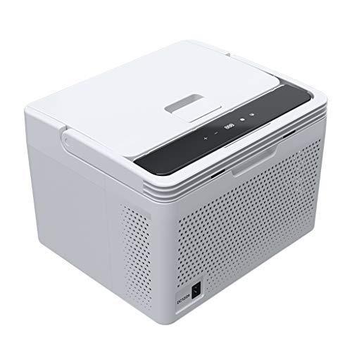 Mini Freezing Refrigerator, 10 Liter Cooler & Warmer, Portable Small Fridge for Car and Home, DC 12V/24V/AC 110~220V, Compact Compressor Fridge with LCD Display