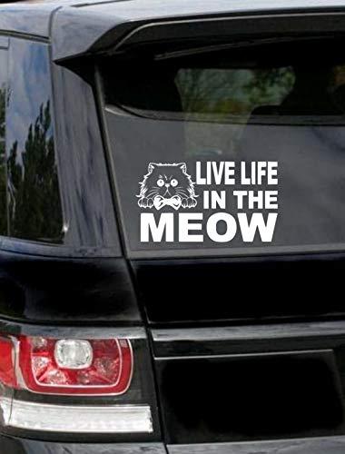 Lplpol - Adhesivo de vinilo antipolvo de alta calidad con texto en inglés 'Live Life in the Meow', adhesivo para gato mamá, gato o mamá, calcomanía para coche, gato o gato, calcomanía para coche de gato, Cat Dad, 6 pulgadas