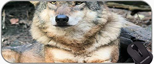 XXL Tamaño Grande Mouse Pads, Wolf Wolves Snow Wolf Paisaje Mousepad XXL para Juego