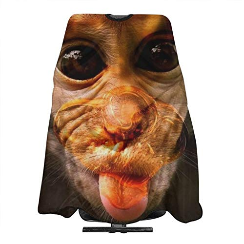 Adult Barber Cape, Professional Salon Haircut Capes,Funny Monkey Haircut Kit Hairdressing Apron for Home Salon and Barbershop