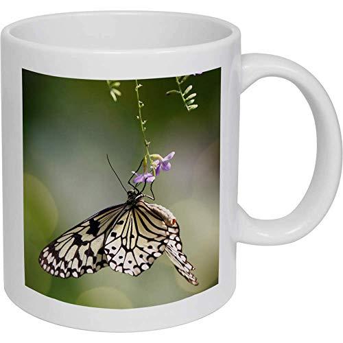 Taza de cerámica de la taza de la mariposa regalos para los hombres