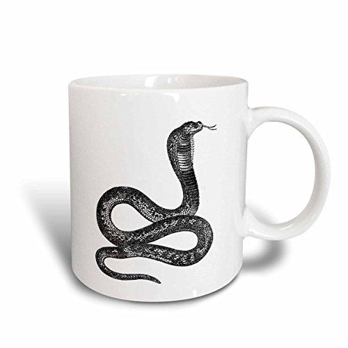 3dRose mug_37375_1'Black and White Vintage Cobra Snake' Ceramic Mug, 11 oz, Multicolor