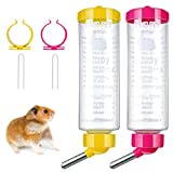 2 Pieces 8.45 oz Guinea Pig Water Bottle, No Drip Small Animal Drinking Large Capacity Bottle for Ferret Hedgehog Hamster Guinea Pig Chinchilla (Blue, Green)