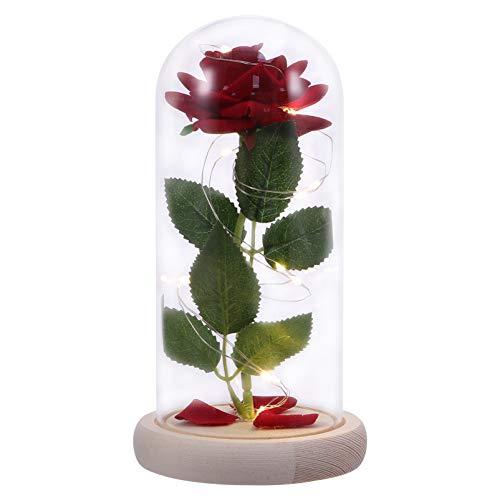 WINOMO La Bella Y La Bestia Rosa Enchanted Flower Lamp Artificial Red Silk Rose in Glass Domo Flower Micro Landscape Kit with Led Light for Valentines Day Día de La Madre Presente