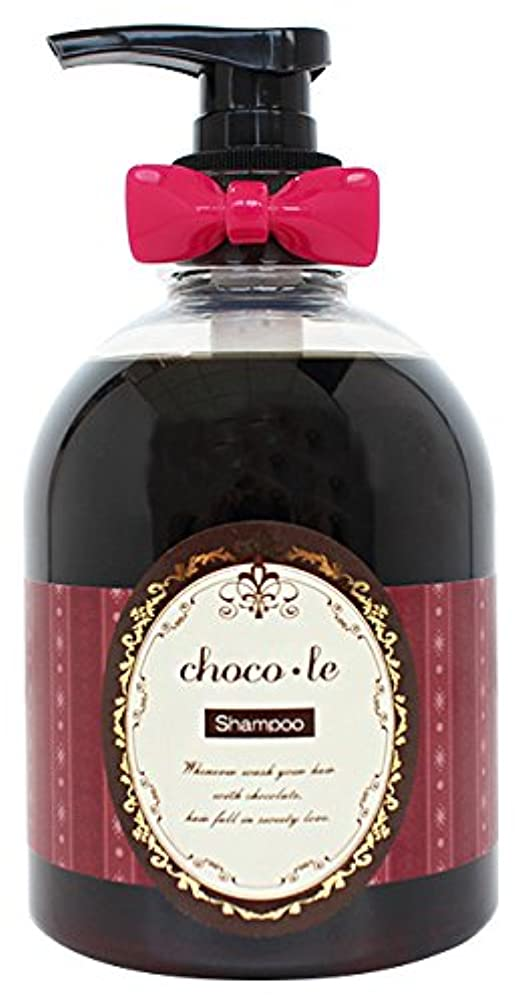 冗長雄大な恩恵ハホニコ チョコレ シャンプー 300ml