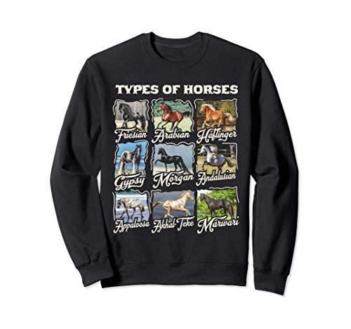 Camiseta de caballo Tipos de razas de caballos Cabalgata Sudadera