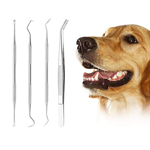 SCOBUTY Zahnsteinentferner Hund,Zahnsteinentferner Set für Hunde und Katzen,Pet Zahnsteinentferner,Zahnreinigungswerkzeug für Hunde und Katzen,Zahnreinigung Mundpflege Tools für Hunde und Katzen