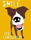 Smile Animal Art Poster Print by Ginger Oliphant, 11x14